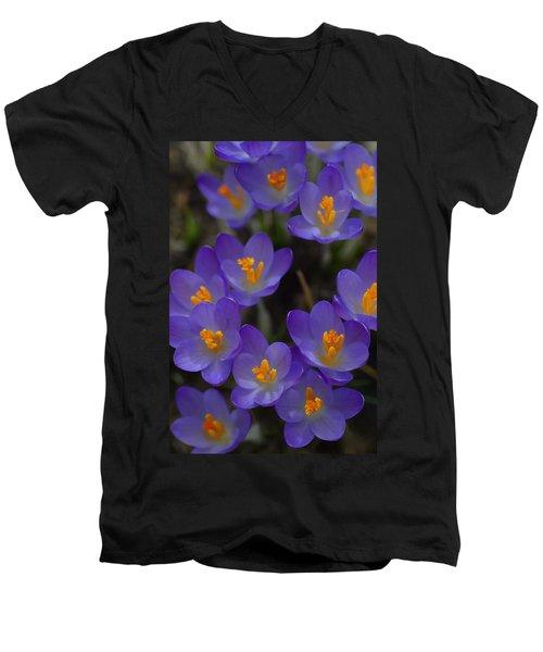 Spring Charmers Men's V-Neck T-Shirt by Tim Good