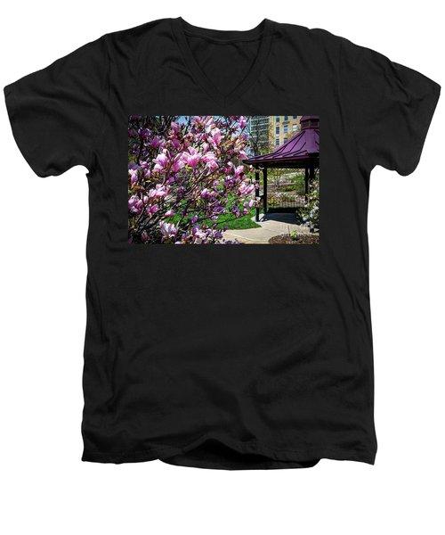Spring Garden Men's V-Neck T-Shirt by Deborah Klubertanz