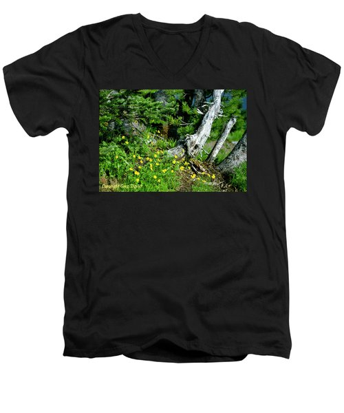 Spring In The High Country Men's V-Neck T-Shirt