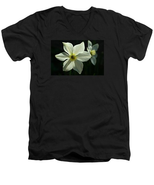 Spring Perennial Men's V-Neck T-Shirt
