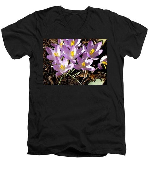 Springtime Crocuses  Men's V-Neck T-Shirt