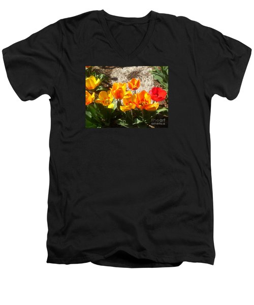 Springtime Flowers Men's V-Neck T-Shirt