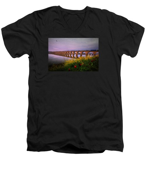 Springtime Reflections From Shipoke Men's V-Neck T-Shirt by Shelley Neff