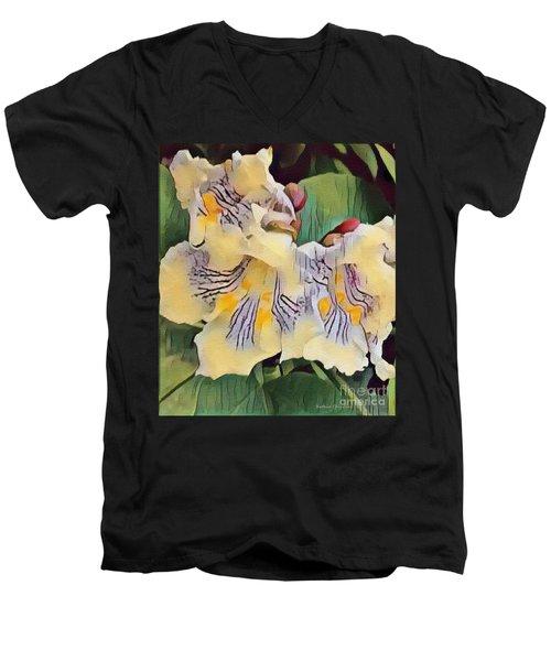 Men's V-Neck T-Shirt featuring the photograph Spun Gold by Kathie Chicoine