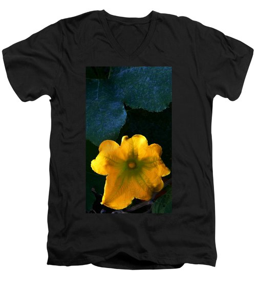 Men's V-Neck T-Shirt featuring the photograph Squash Blossom by Lenore Senior