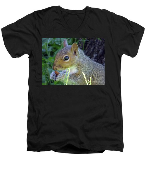 Squirrel Eating Men's V-Neck T-Shirt
