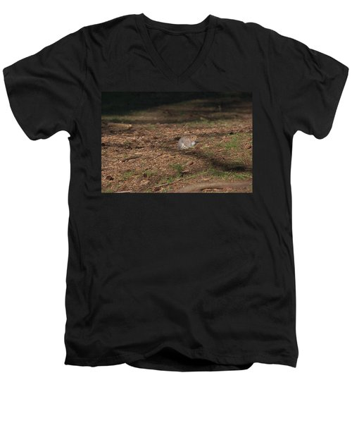 Squirrrrrrel? Men's V-Neck T-Shirt