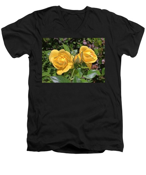 Men's V-Neck T-Shirt featuring the photograph St. Andrews Yellow Rose Family by Daniel Hebard