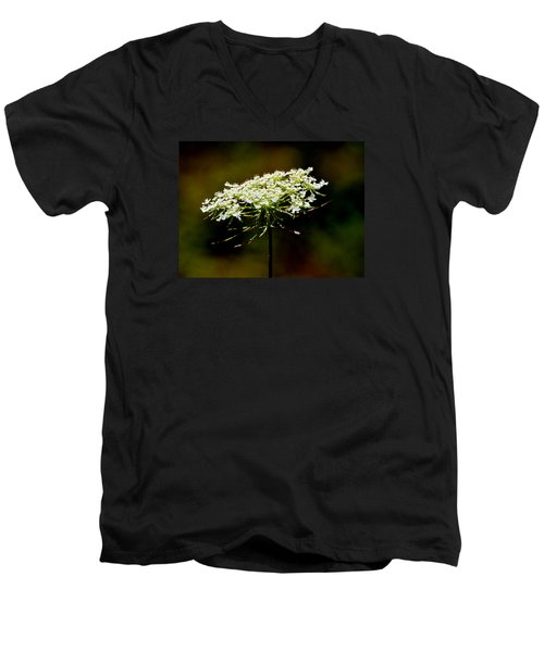 Men's V-Neck T-Shirt featuring the photograph Stamens Of Queen Annes Lace 2  by Lyle Crump
