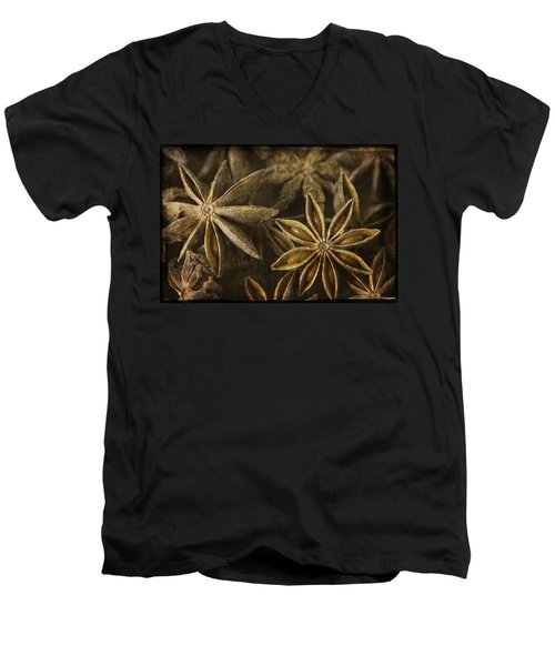 Star Anise Men's V-Neck T-Shirt