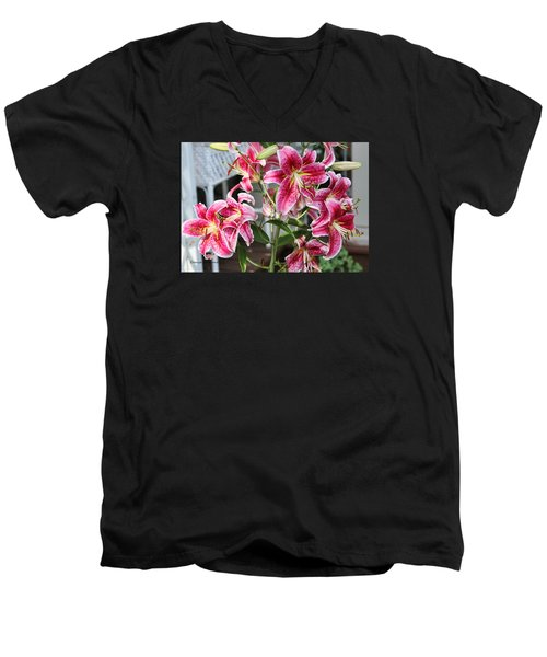 Men's V-Neck T-Shirt featuring the photograph Stargazer by Denise Romano
