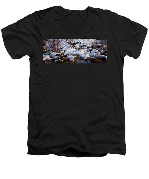 Men's V-Neck T-Shirt featuring the photograph Staying Put by Albert Seger