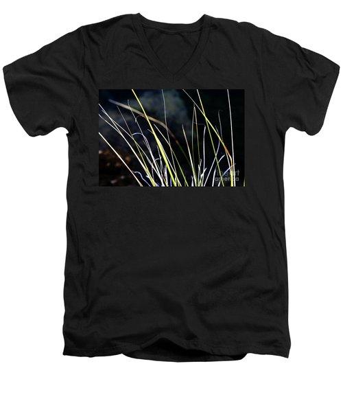 Stems Men's V-Neck T-Shirt