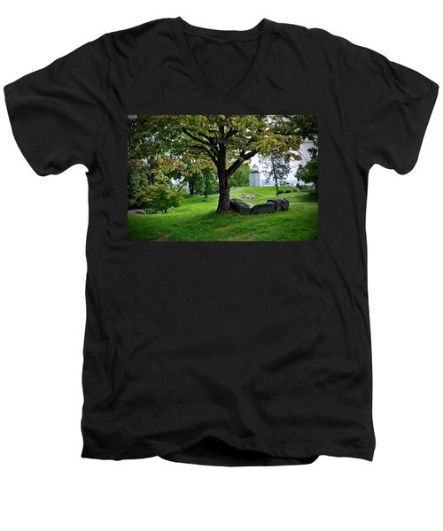 Stony Point Landscape Men's V-Neck T-Shirt