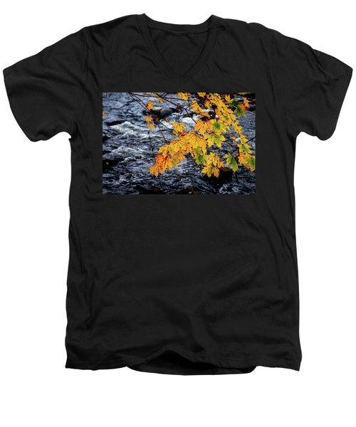 Stream In Fall Men's V-Neck T-Shirt