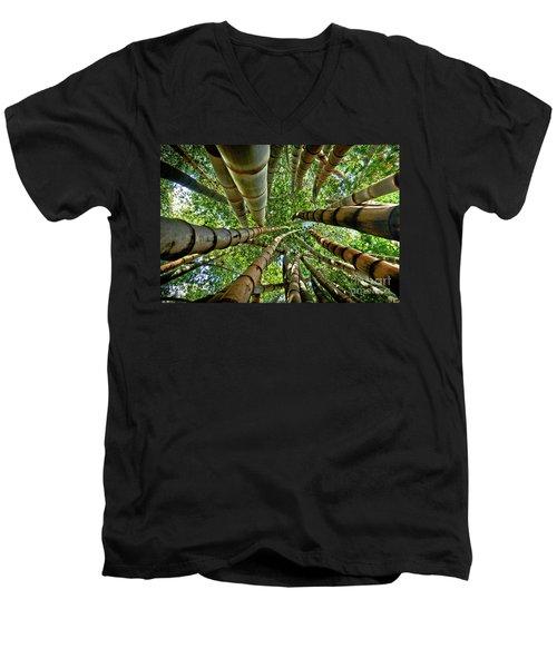 Stunning Bamboo Forest - Color Men's V-Neck T-Shirt