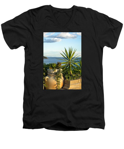 Succulents By The Sea Men's V-Neck T-Shirt