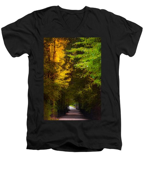 Summer And Fall Collide Men's V-Neck T-Shirt
