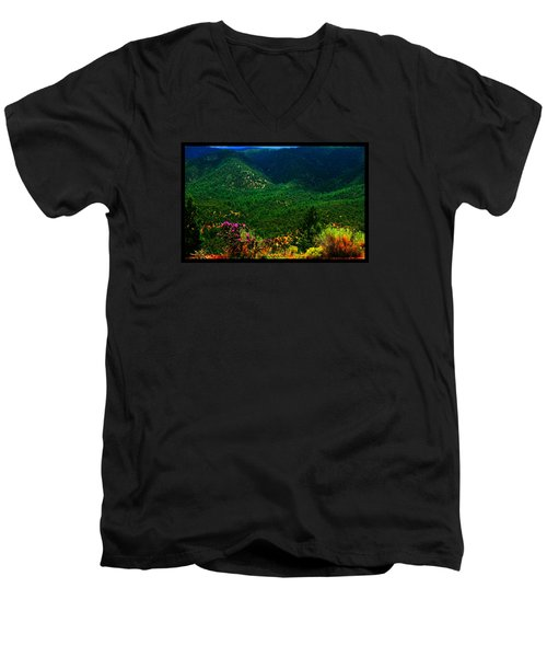 Summer In Upper Pacheco Canyon Men's V-Neck T-Shirt by Susanne Still