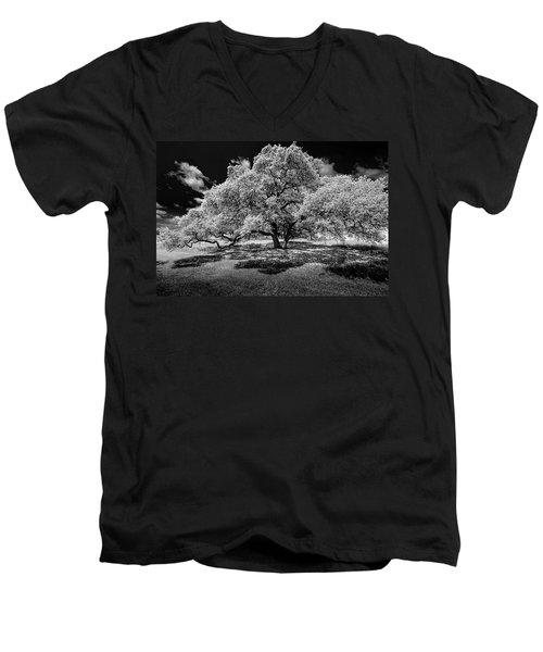 A Summer's Night Men's V-Neck T-Shirt by Darryl Dalton