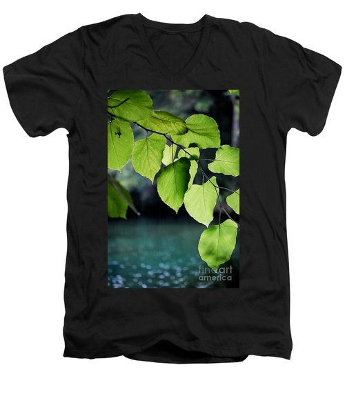 Summer Showers Men's V-Neck T-Shirt by Robert Meanor