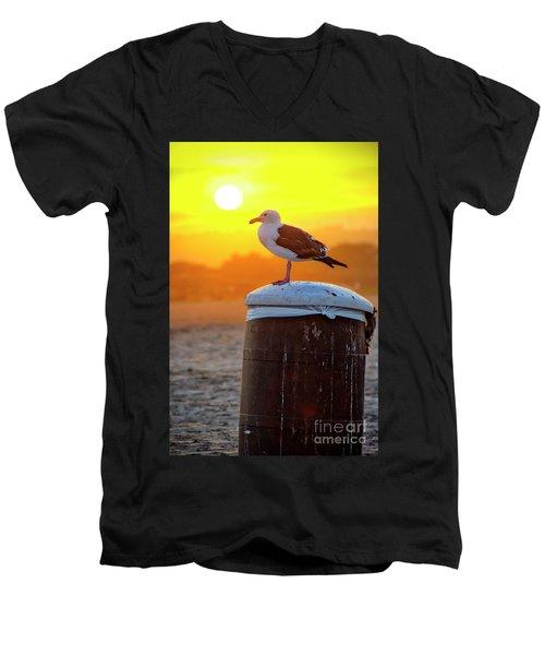 Sun Gull Men's V-Neck T-Shirt