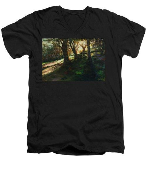 Sun Men's V-Neck T-Shirt by Rick Nederlof