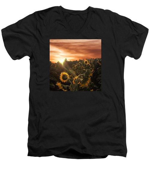 Sunflower Rise Men's V-Neck T-Shirt
