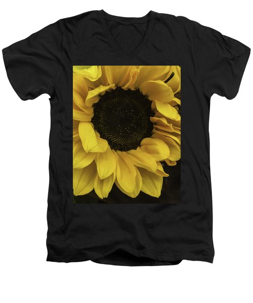Sunflower Up Close Men's V-Neck T-Shirt
