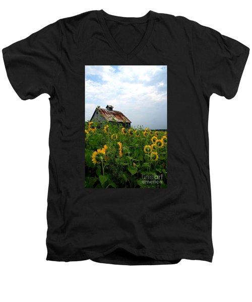 Sunflowers Along Rt 6 Men's V-Neck T-Shirt
