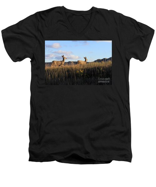 Sunlit Deer  Men's V-Neck T-Shirt
