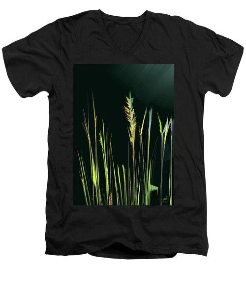 Sunlit Grasses Men's V-Neck T-Shirt
