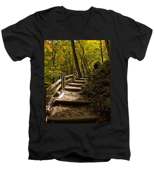 Sunlit Trail Men's V-Neck T-Shirt