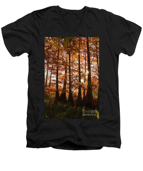 Men's V-Neck T-Shirt featuring the photograph Sunlit Trees At Lake Murray by Tamyra Ayles