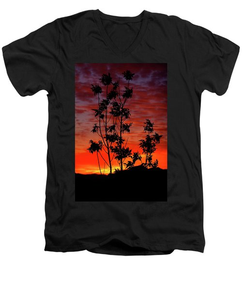Sunrise Magic Men's V-Neck T-Shirt