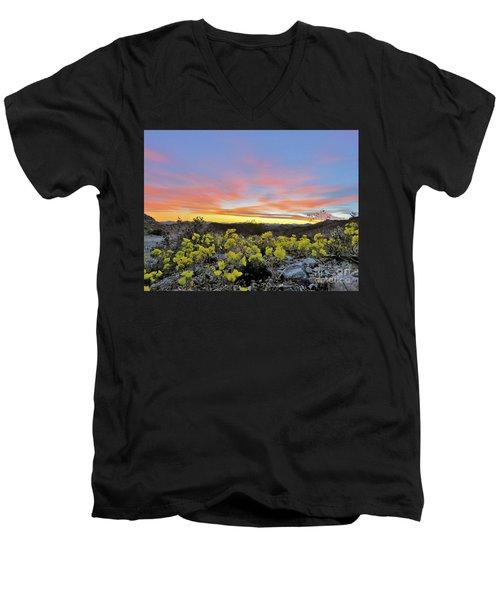 Sunset And Primrose Men's V-Neck T-Shirt by Michele Penner