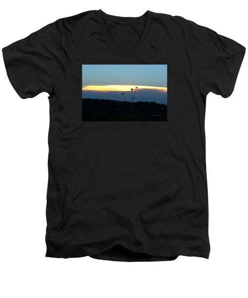 Men's V-Neck T-Shirt featuring the digital art Sunset Gold Stripe Queen Anne by Jana Russon