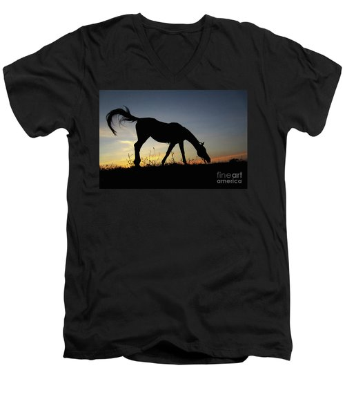 Sunset Horse Men's V-Neck T-Shirt