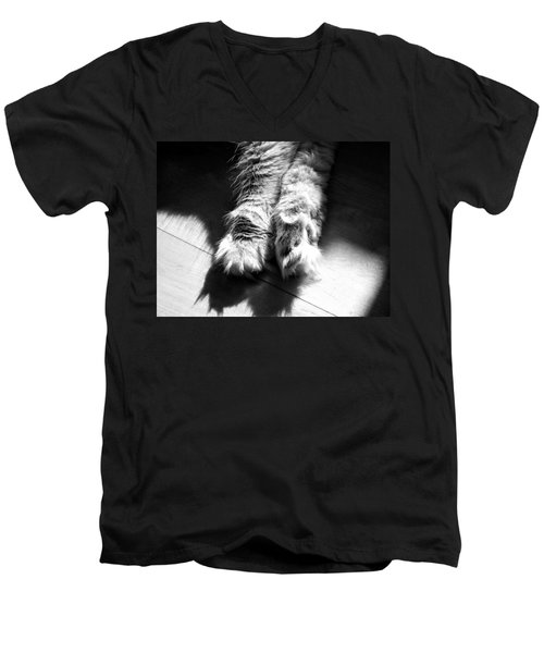 Sunshine And Shadows Men's V-Neck T-Shirt