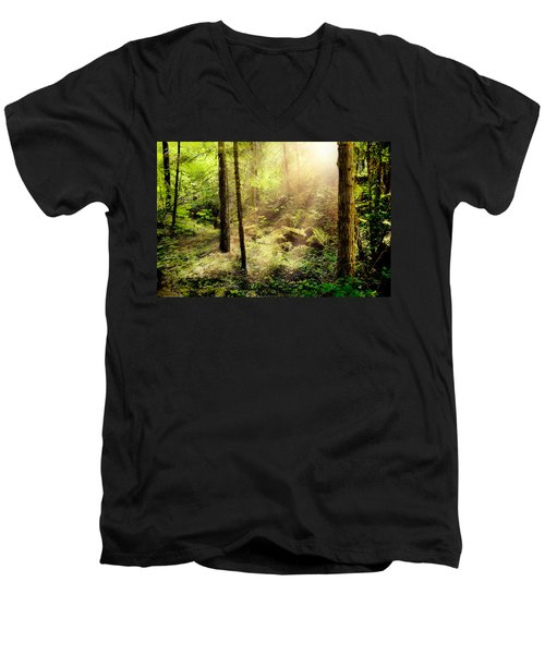 Sunshine From Above Men's V-Neck T-Shirt