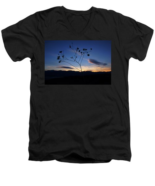 Superbloom Sunset In Death Valley 101 Men's V-Neck T-Shirt by Daniel Woodrum