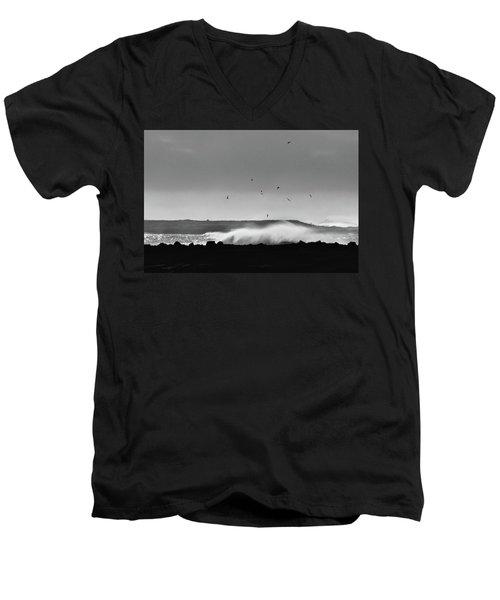 Surf Birds Men's V-Neck T-Shirt