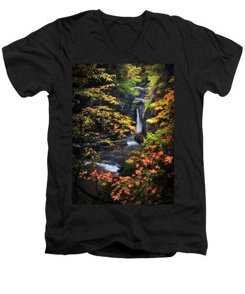 Surrounded By Fall Men's V-Neck T-Shirt