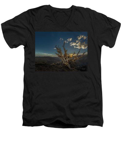 Survivor Men's V-Neck T-Shirt