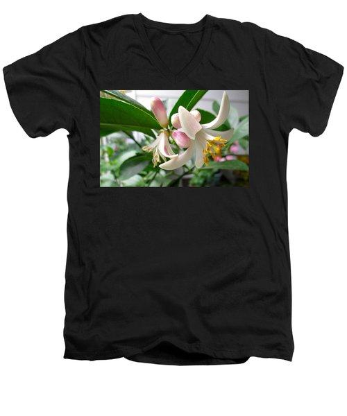 Sweet Nectar Men's V-Neck T-Shirt