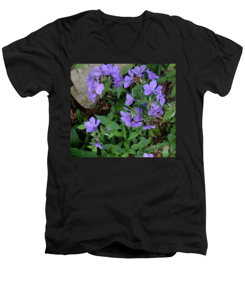Sweet Williams In The Spring Men's V-Neck T-Shirt