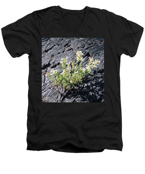 T-107709 Hot Rock Penstemon Men's V-Neck T-Shirt