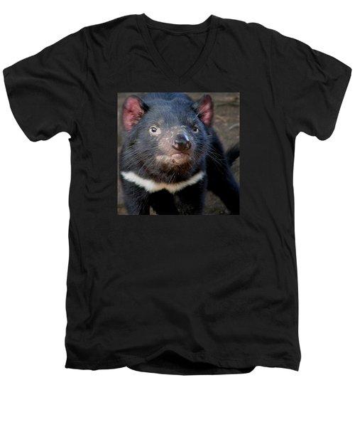 Tasmanian Devil Men's V-Neck T-Shirt by Greg Slocum