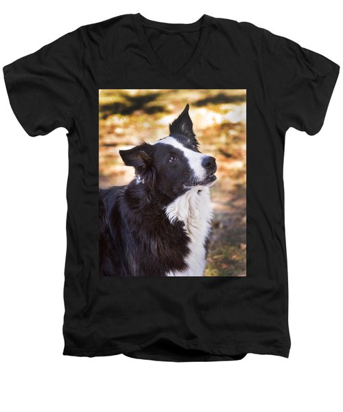 Tessie 8 Men's V-Neck T-Shirt