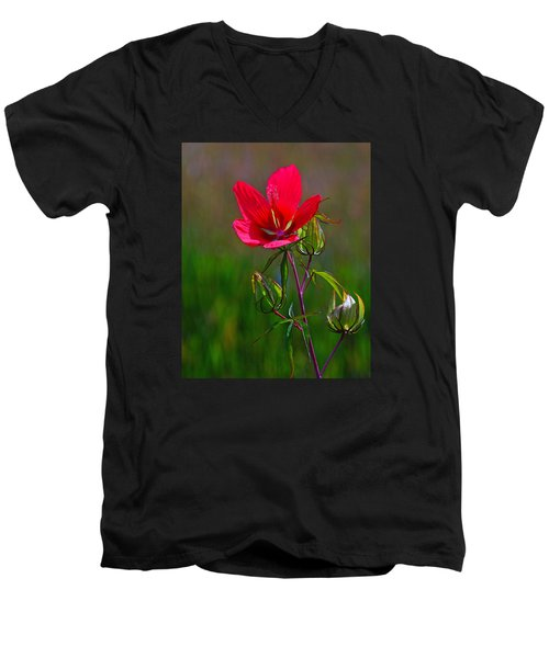Texas Star Hibiscus Men's V-Neck T-Shirt